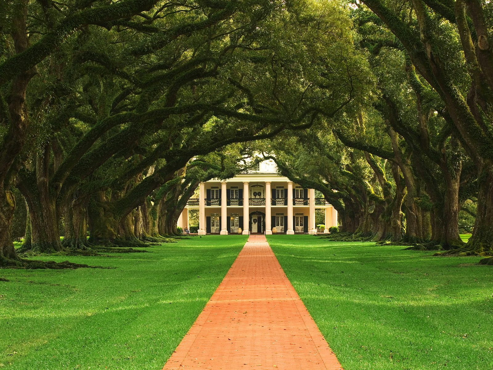 Oak Alley Plantation New Orleans Tours family fun in new orleans