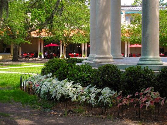 Audubon Botanical Gardens family fun in new orleans