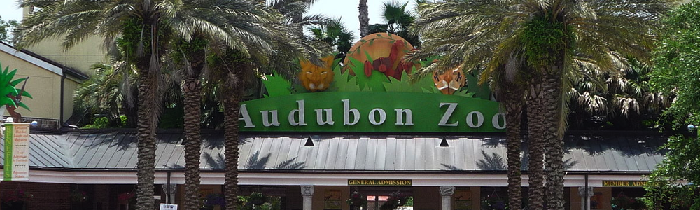 Audubon Zoo museum kids family fun in new orleans