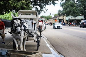 historic Jackson Square Royal Carriages fun in new orleans