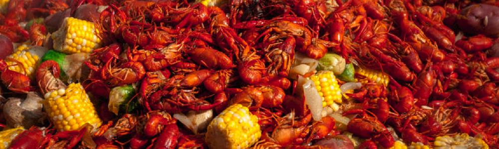 New Orleans Culinary Tours fun in new orleans crawfish