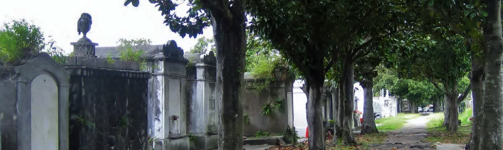 Private Tours New Orleans cemetery fun in new orleans