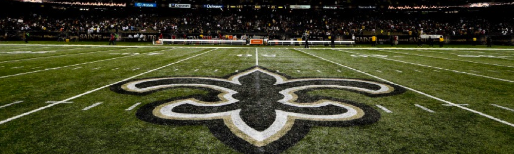 New Orleans Saints Football sports family fun in new orleans