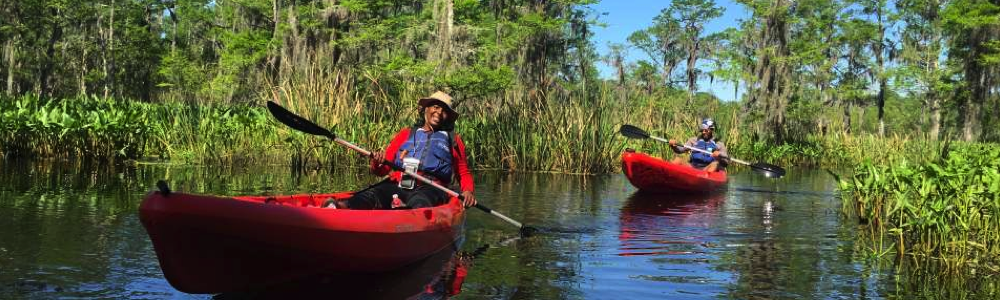 New Orleans Swamp Tours family fun in new orleans kayak