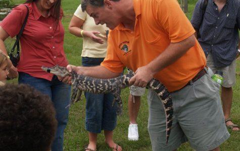 best swamp tours in louisiana fun in new orleans Insta-Gator