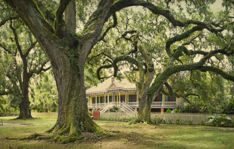 Laura Plantation best plantation tours in new orleans fun in new orleans