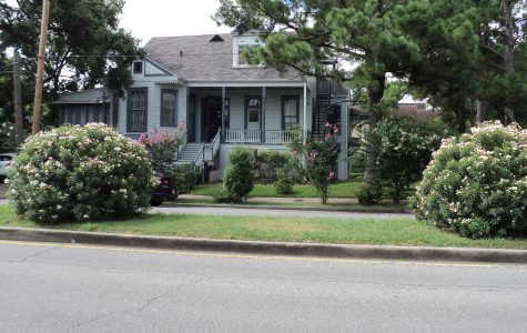 Oakview New Orleans Bed and Breakfasts fun in new orleans