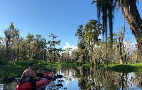 Swamp Kayak Tour best swamp tours in louisiana fun in new orleans