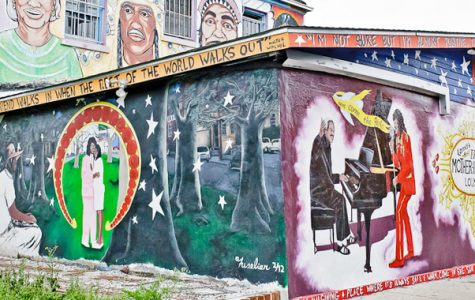 Treme & Mardi Gras Indian Cultural Tours New Orleans fun in new orleans
