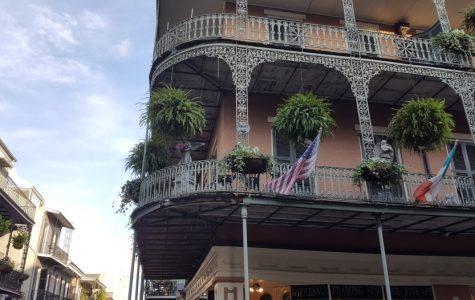 Unique NOLA Tours New Orleans French Quarter Tours fun in new orleans