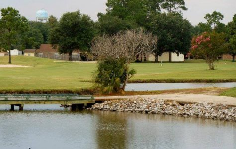 Belle Terre Country Club New Orleans Golf Courses family fun in new orleans