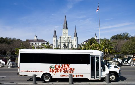 Cajun Encounters New Orleans Bus Tours family fun in new orleans