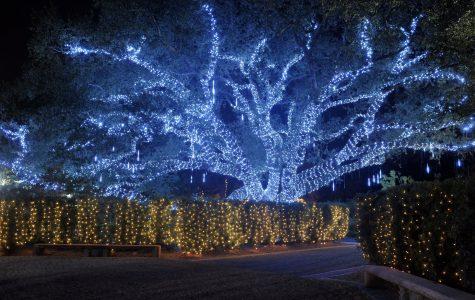 Celebration in the Oaks Winter Festivals fun in new orleans christmas